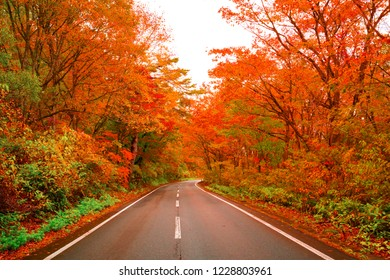 road way in Autumn colours red Leaves Fukushima, Japan