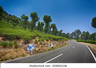A road weaving through coffee/tea plantations
