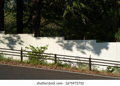 road and white fence in the nature