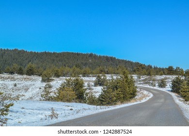 Road in winter near Zlatibor in Serbia