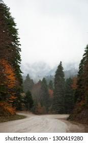 Road to Yedigoller National Park (Seven Lakes) in Bolu