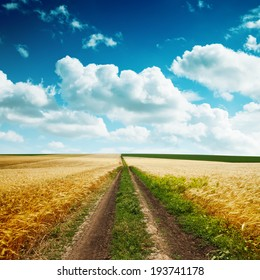 road in yellow field with harvest and cloudy blue sky