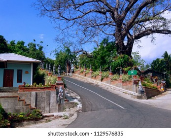 Roads And The Big Old Tree Entering The Cemetery Of Patemon Village North Bali