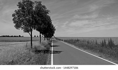 Roads / Brahmenau / Germany: Dead straight narrow country road in Brahmenau on a sunny day in July