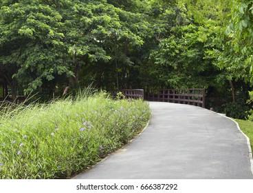 Roads, bridges and flowers in the garden.