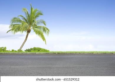 Roadside and coconut trees on blue sky