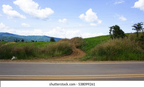 The roadside on the hill with another mountain view and rice farm agriculture, seeing the grey asphalt with sand and dust, the grass flowers, a big tree, bushes and an electric pole with messy cable