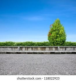 Roadside pavement and tree on blue sky.