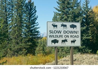 A roadside warning sign in Grand Teton National Park.