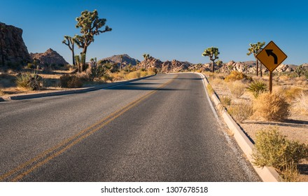 Roadway through Joshua tree national park
