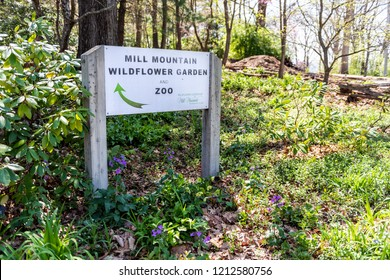 Roanoke, USA - April 18, 2018: Mill Mountain Park in Virginia during spring with sign for Zoo, Wildflower garden, nobody