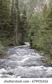 Roaring Big Thompson River