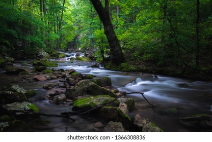 Roaring Run Creek in the Alleghany County region of Virginia on a cool misty late Spring morning.