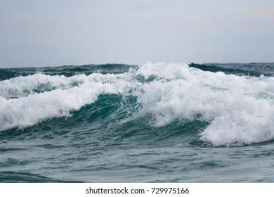 Roaring storm waves of Pacific coastline