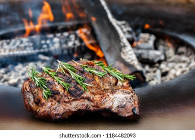 roast grilled meat with rosemary twigs ready for eating