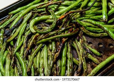 Roasted char-grilled green beans cooling in oven pan