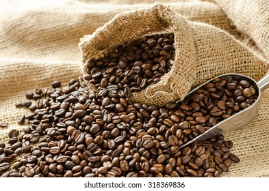 roasted coffee beans with burlap sack and scoop