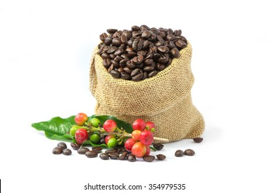 Roasted coffee beans in burlap sack , red and green coffee beans on a branch with leaf on white background.