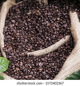 Roasted coffee beans in a canvas bag close-up. Wholesale coffee sales.