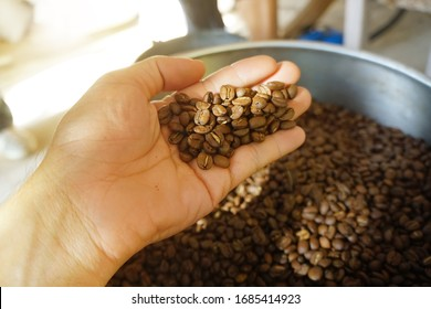 Roasted coffee beans in the hand.