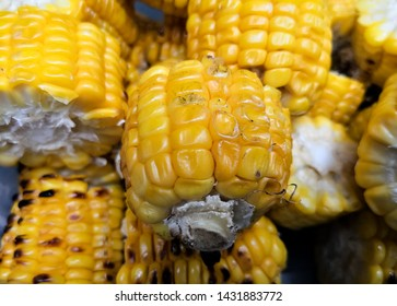 Roasted corn cob pieces as accompaniment in a traditional barbecue
