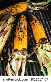 Roasted corn on the grill. Close up