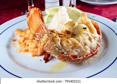 Roasted lobster plated with rice , shallow focus