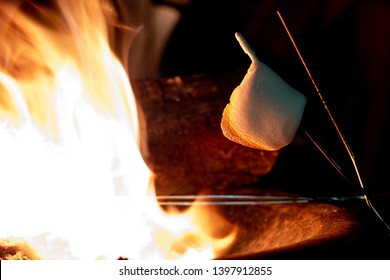 A roasted marshmallow sagging on a stick by a campfire, ready to go on a s'mores.