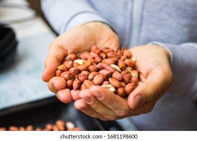Roasted peanut, groundnut, goober legumes, nut, brown seeds