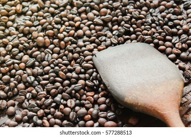 roasted robusta coffee beans and wooden flipper in a threshing basket (selective focus)