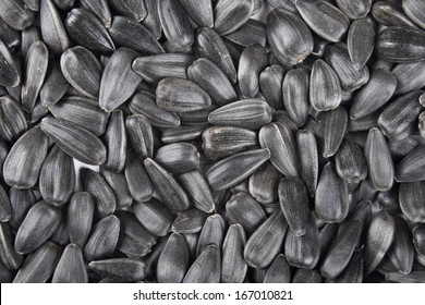 roasted salty sunflower seeds background