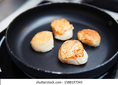 roasted scallops fried in a black pan, fried in oil, cooking, seafood