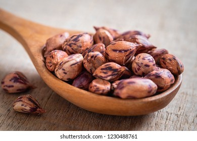 Roasted striped peanuts on wooden spoon