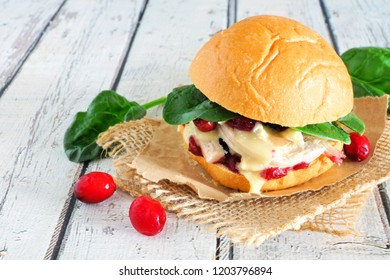 Roasted turkey sandwich with cranberry sauce and cheese. Close up with a white wood background.