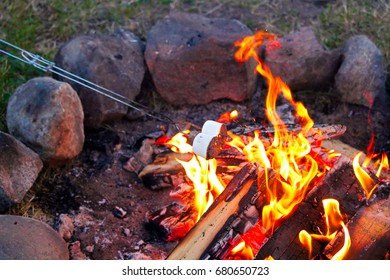 Roasting marshmallows for smores over a colorful campfire.