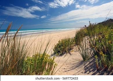 Robe, South Australia  Sand dunes at Robe in South Australia