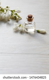 Robinia (false acacia) essential oil (remedy, extract) bottle with fresh acacia flowers on wooden background, selective focus, vertical