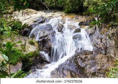Robinson Falls Cascading through the Lush Rainforest of the Cameron Highlands