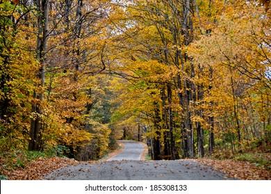 Robinson's Cemetery Road in Calais, Vermont winds through golden autumn trees.