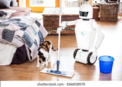 robot or automatic floor scrubber is cleaning the floor of a living room, while a cat is coming.