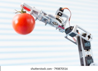 robot holds an tomato in his arm