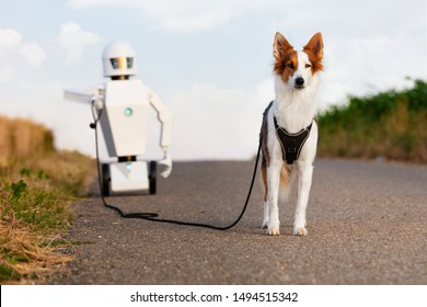 robot is taking a walk with a dog on a street between cornfields, concept household ai robot or ambient assisted living. robot is having his own pet