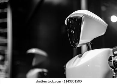 Robotic droids head and shoulders.