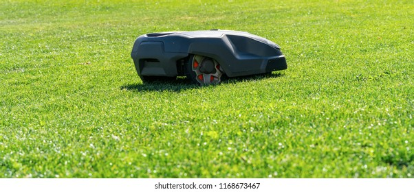 Robotic lawn mower on grass. copyspace for your individual text.