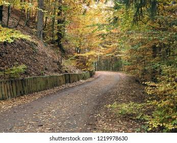 Rock in the autumn forest, Bohemian Switzerland, Czech republic