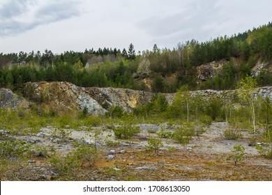 Rock break, quarry with tree. Nature sanctuary Vyri vrch, Czech republic