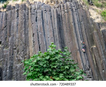 A rock climber ascends one of the top rope routes on The Columns, a vertical basalt cliff in Skinner Butte Park in Eugene Oregon USA.