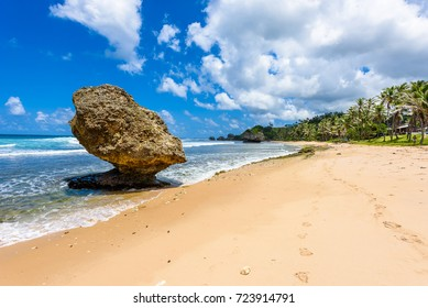 Rock formation on the beach of Bathsheba, East coast of  island Barbados, Caribbean Islands - travel destination for vacation