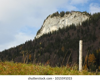 Rock formation surrounded by forest in austrian mountains