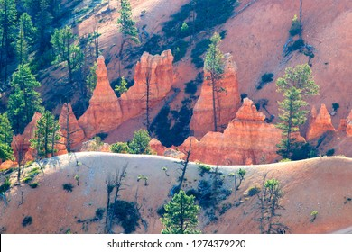 """Rock formations and hoodoos, Bryce Canyon National Park, Utah, USA. Hoodoos are tall skinny spires of rock that protrude from the bottom of arid basins and """"broken"""" lands."""